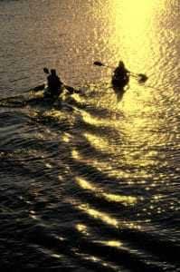 Man and woman kayaking on sunlit water