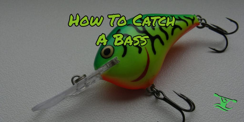 How to catch a bass
